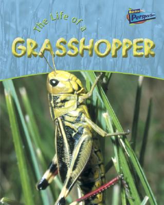 Life of a Grasshopper - Hibbert, Clare