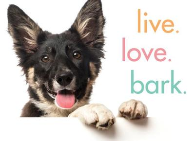 Live. Love. Bark. - Sourcebooks