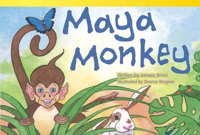 Maya Monkey (Upper Emergent) - Brian, Janeen