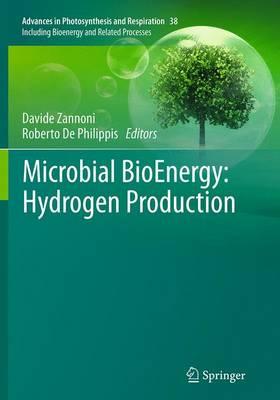 Microbial Bioenergy: Hydrogen Production - Zannoni, Davide (Editor)