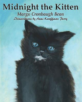 Midnight the Kitten - Bean, Margo Cronbaugh, and Perry, Aumi Kauffman (Illustrator)