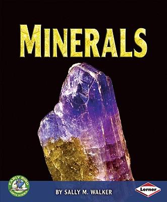 Minerals - Walker, Sally M