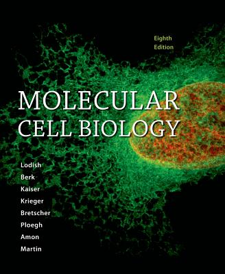 Molecular Cell Biology - Lodish, and Berk, and Kaiser, Chris A