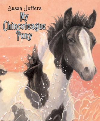 My Chincoteague Pony -