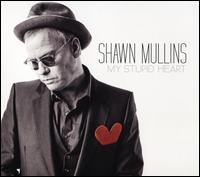 My Stupid Heart - Shawn Mullins