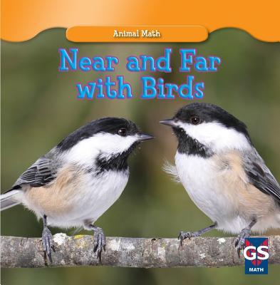 Near and Far with Birds - Mineo, Tyrone