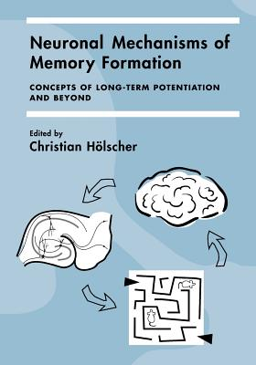 Neuronal Mechanisms of Memory Formation: Concepts of Long-Term Potentiation and Beyond - Holscher, Christian (Editor), and Christian, Holscher (Editor), and H Lscher, Christian (Editor)