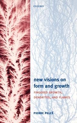 book Il cristianesimo secondo gli ebrei 2009