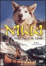 Nikki - Wild Dog of the North