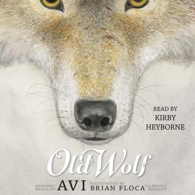 Old Wolf - Avi