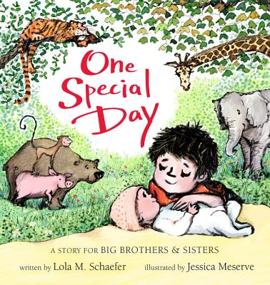 One Special Day: A Story for Big Brothers and Sisters - Schaefer, Lola M, and Meserve, Jessica (Cover design by)
