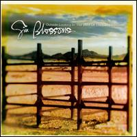 Outside Looking In: The Best of the Gin Blossoms - The Gin Blossoms