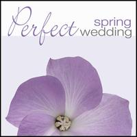Perfect Spring Wedding -