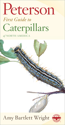 Peterson First Guide to Caterpillars of North America - Wright, Amy
