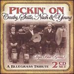 Pickin' on Crosby, Stills, Nash & Young: Deja Blue Grass