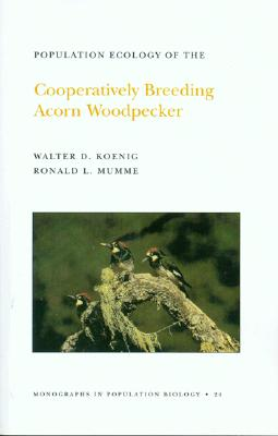 Population Ecology of the Cooperatively Breeding Acorn Woodpecker. (Mpb-24), Volume 24 - Koenig, Walter D