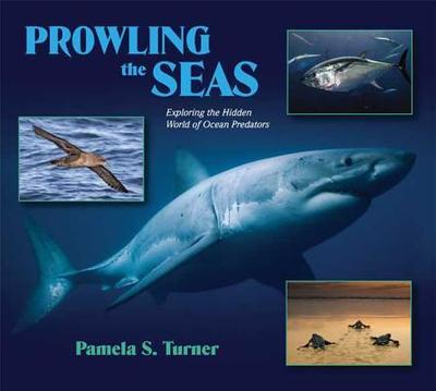 Prowling the Seas: Exploring the Hidden World of Ocean Predators - Turner, Pamela S