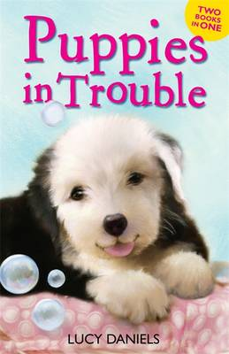 Puppies in Trouble: Puppies in the Pantry & Puppy in a Puddle - Daniels, Lucy