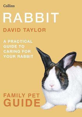 Rabbit - Taylor, David