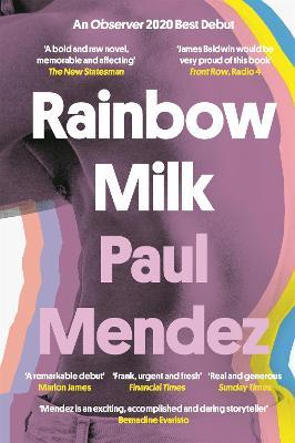 Rainbow Milk: an Observer 2020 Top 10 Debut - Mendez, Paul