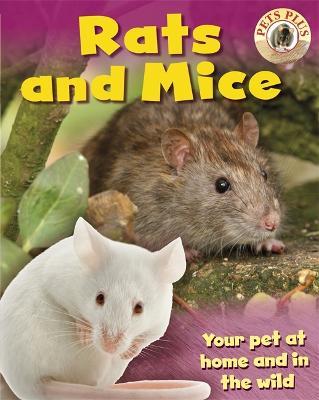Rats and Mice - Morgan, Sally