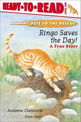Ringo Saves the Day!: Ringo Saves the Day! - Clements, Andrew