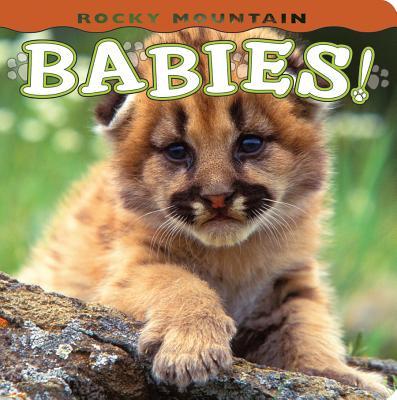 Rocky Mountain Babies! - Shattil, Wendy (Photographer), and Rozinski, Bob (Photographer)