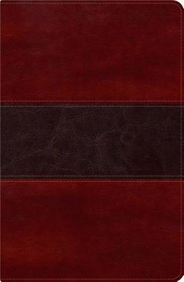 RVR 1960 Biblia del Pescador, negro piel genuina: Evangelismo Discipulado Ministerio - Diaz-Pabon, Luis angel