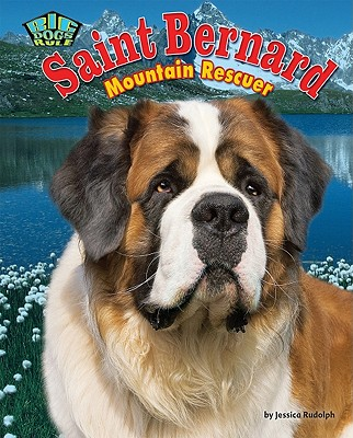 Saint Bernard: Mountain Rescuer - Rudolph, Jessica