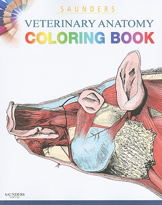 Saunders Veterinary Anatomy Coloring Book - Singh, Baljit, and Saunders