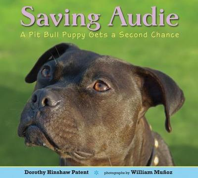 Saving Audie: A Pit Bull Puppy Gets a Second Chance - Patent, Dorothy Hinshaw, and Munoz, William (Photographer)