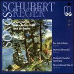 Schubert arranged by Reger: Songs