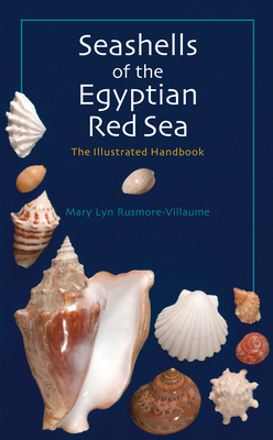 Seashells of the Egyptian Red Sea: The Illustrated Handbook - Rusmore-Villaume, Mary Lyn