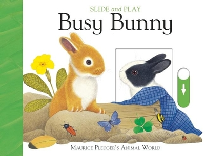 Slide and Play: Busy Bunny - Wood, A J