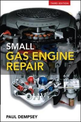 Small Gas Engine Repair - Dempsey, Paul