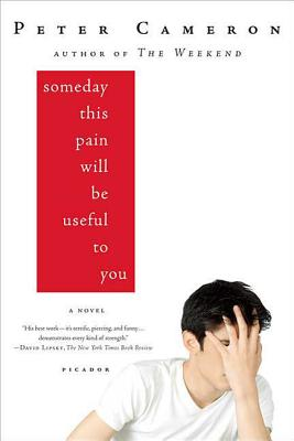 Someday This Pain Will Be Useful to You - Cameron, Peter