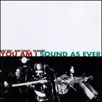 Sound as Ever - You Am I