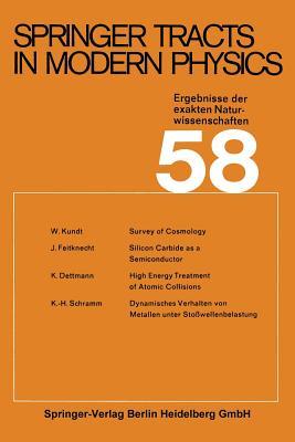 Springer Tracts in Modern Physics: Ergebnisse Der Exakten Naturwissenschaften - Kundt, W