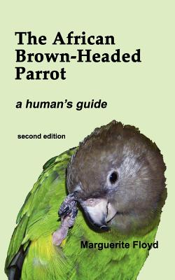 The African Brown-Headed Parrot - Floyd, Marguerite