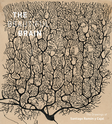 The Beautiful Brain: The Drawings of Santiago Ramon Y Cajal - Swanson, Larry W, and Newman, Eric, and Araque, Alfonso