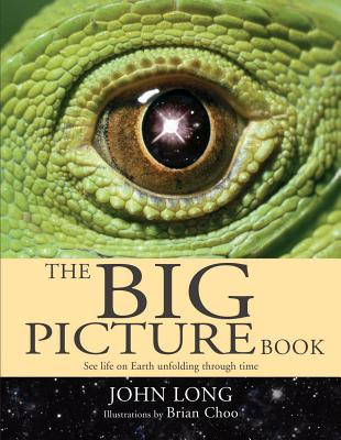 The Big Picture Book - Long, John