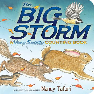 The Big Storm: A Very Soggy Counting Book -