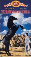 The Black Stallion Returns - Robert Dalva