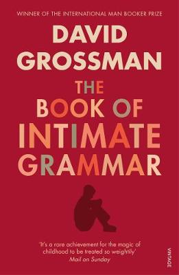 The Book of Intimate Grammar - Grossman, David, and Rosenberg, Betsy (Translated by)
