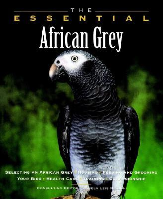 The Essential African Grey - Higdon, Pamela L (Editor), and Dunbar, Ian, Ph.D., and Ilasenko, Eric (Photographer)