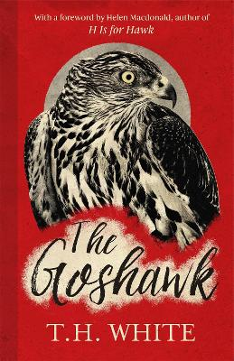 The Goshawk: With a new foreword by Helen Macdonald - White, T. H., and Macdonald, Helen (Foreword by)