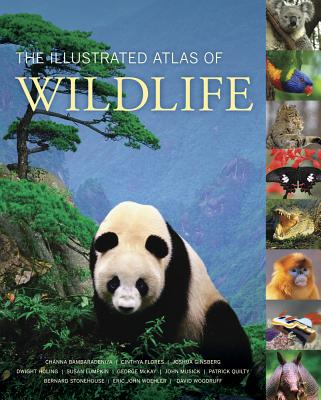 The Illustrated Atlas of Wildlife - Bambaradeniya, Channa, and Flores, Cinthya, and Ginsberg, Joshua