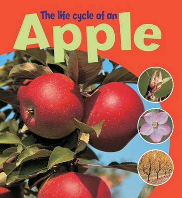 The Life Cycle of an Apple - Thomson, Ruth