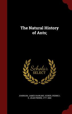 The Natural History of Ants; - Johnson, James Rawlins, and Huber, Pierre I E Jean Pierre 1777-18 (Creator)