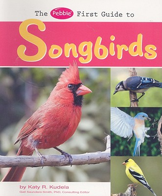 The Pebble First Guide to Songbirds - Kudela, Katy R